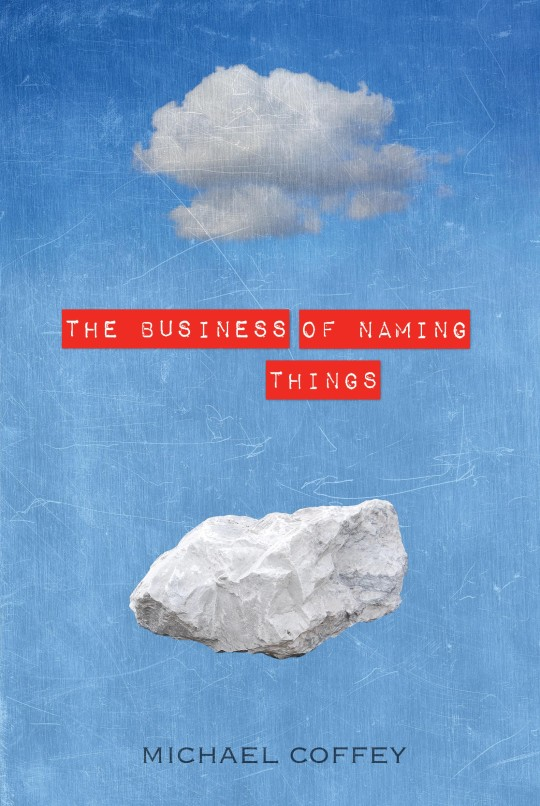 BUSINESS OF NAMING THINGS by Michael Coffey 9781934137864