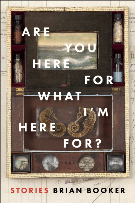 ARE YOU HERE by Brian Booker 9781942658122
